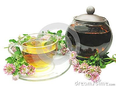 Herbal tea in tea-pot with clover