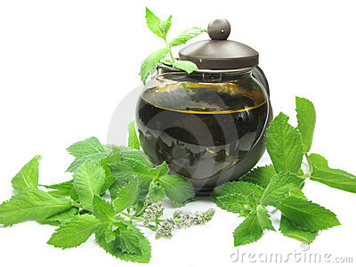 Herbal tea in tea-pot among mint