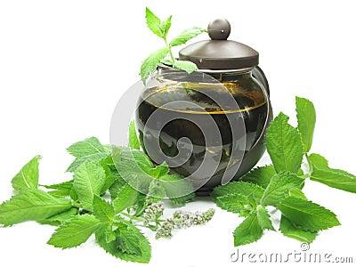 Herbal tea in tea-pot among mint