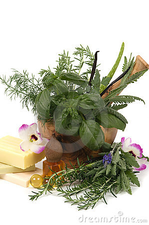 Free Herbal Therapy Stock Photo - 9079940
