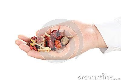 Herbalist holding handful of herbal medicine