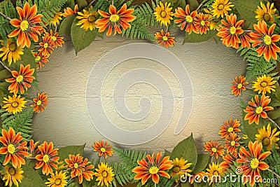 Herbario de flores y de hojas
