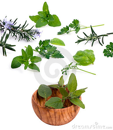 Herbs 001