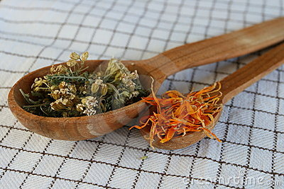 Herbs Royalty Free Stock Photography - Image: 23256647
