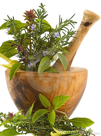 Free Herbs Stock Photos - 3493593