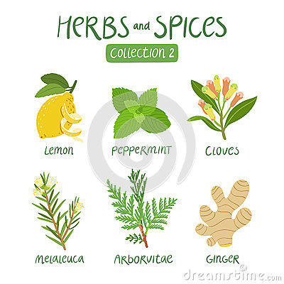 Free Herbs And Spices Collection 2 Stock Photo - 59917260