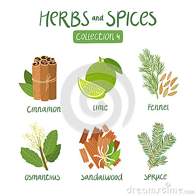 Free Herbs And Spices Collection 4 Royalty Free Stock Photos - 59917268