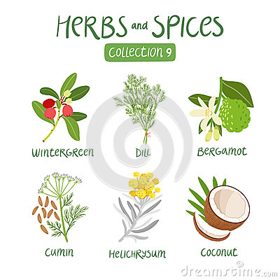 Free Herbs And Spices Collection 9 Royalty Free Stock Photo - 59917195