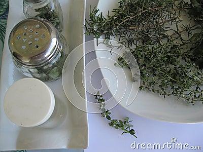 Herbs drying