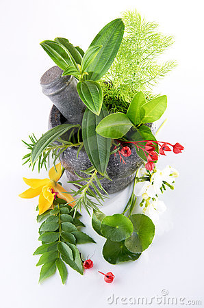 Herbs And Mortar