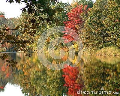 Herbst-Farben