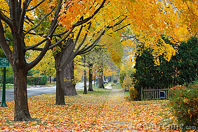 Herbst in Illinois