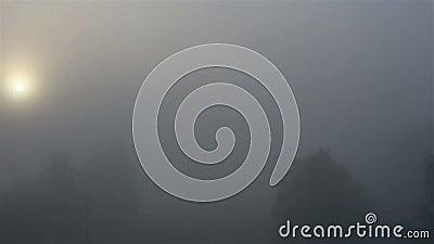 Herbstwetter Nebel vor Ort stock footage