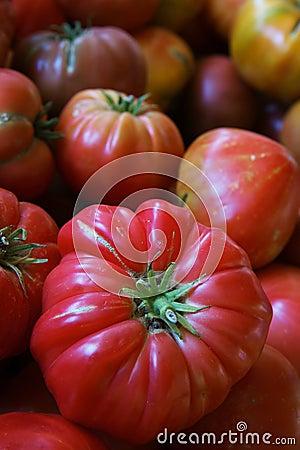 Free Heritage Tomato Royalty Free Stock Photo - 15837355