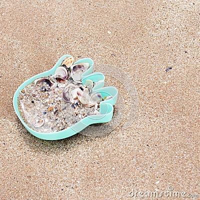 Hermit crabs lies in a child s toy