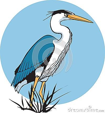 Free Heron Stock Image - 10795571