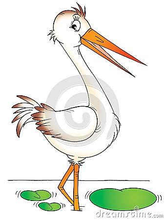Free Heron Stock Images - 1681254