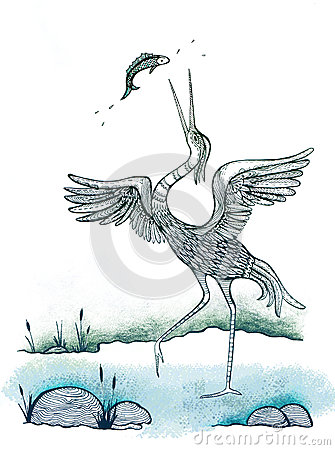 Heron Bird Catching Fish