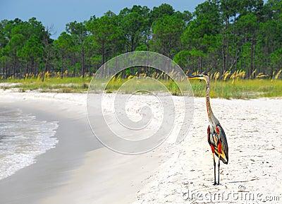 Heron at Seashore