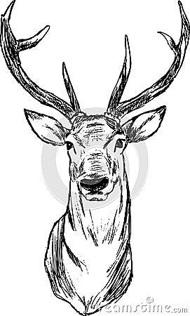 Herten Stock Afbeeldingen Afbeelding 14646194
