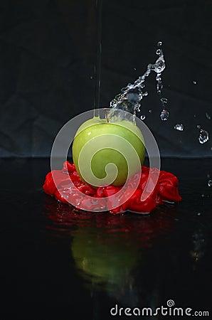 Het Art. van de appel