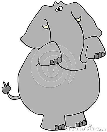 Het bedelen van olifant