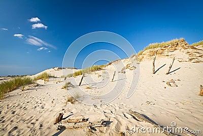 Het bewegen van duinen in Leba, Polen