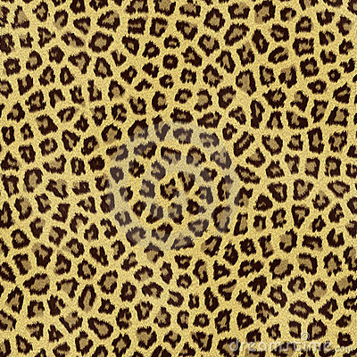 Het bont van de luipaard