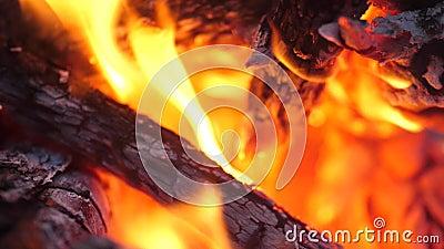 Het branden van rode steenkolen van het vuur campfire Tong van vlam Vonken die van de brand vliegen Langzame motie, 180fps stock footage