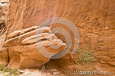 Het Detail van het zandsteen