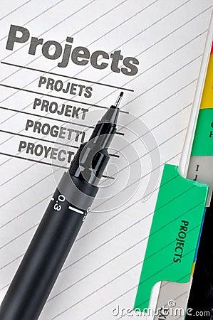 Het document en de pen van het project