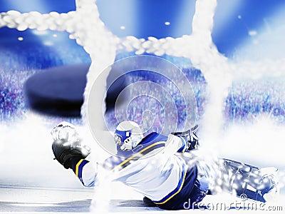 Het doel van het ijshockey