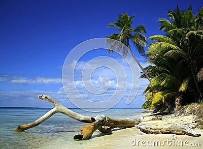Het eiland van Caribean