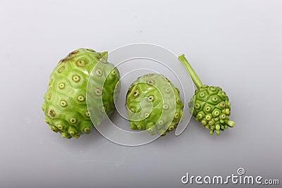 Het Fruit van Noni