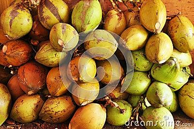 Het fruitwinkel van kokosnoten