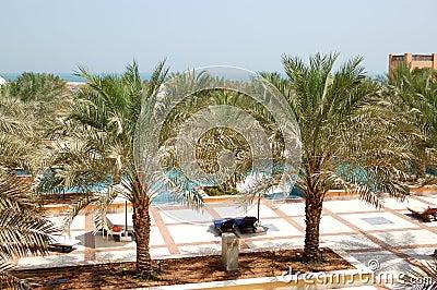 Het gebied van de recreatie van luxehotel met dadelpalm