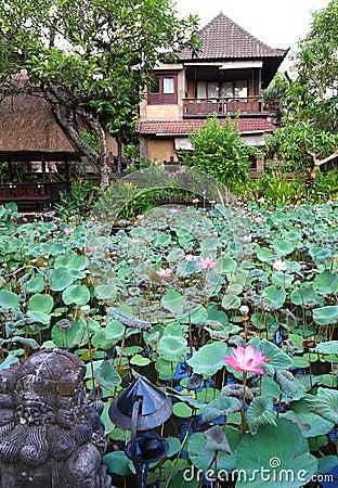 Het huis van de gast met lotusbloemvijver