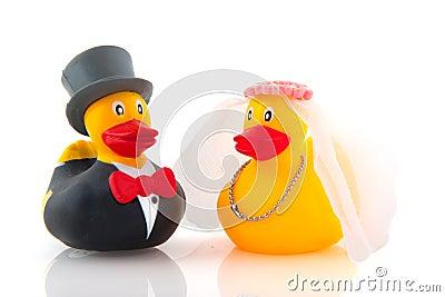 Het huwelijk van de eend