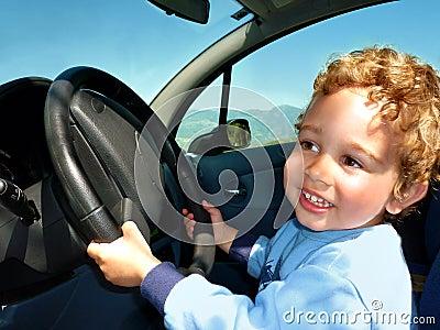 Het jonge geitje van de bestuurder