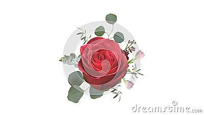 Het kweken van bloemenachtergrond van echte bloemen, bloeiend botanisch patroon, bruids rond boeket, suikergoedpastelkleuren, hel vector illustratie