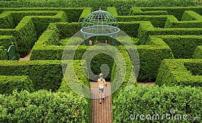 Het Labyrint A van de haag