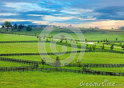 Het land van het paard