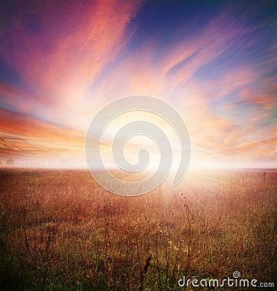 Het Landschap van de ochtend