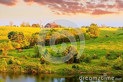 Het landschap van het landbouwbedrijf