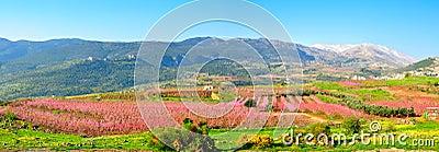 Het Landschap van Israël