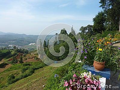 Het landschap van Ooty
