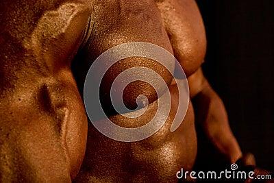 Het lichaam van de bodybuilder