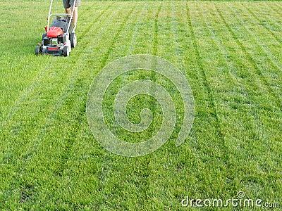Het maaien van het gras