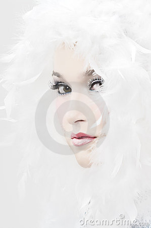 Het Meisje van de sneeuw