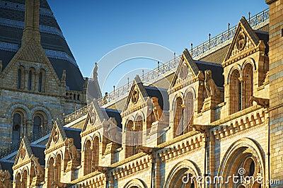 Het nationale Museum van de Geschiedenis: beeldhouwwerk details, Londen